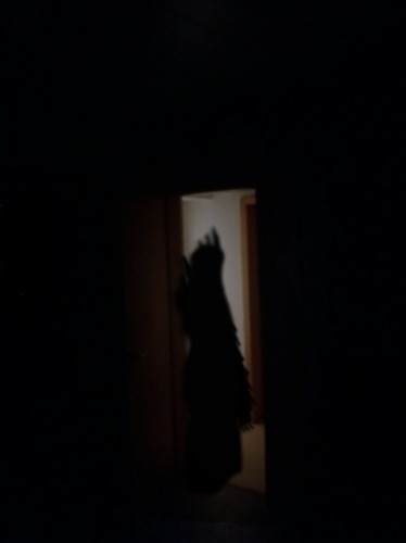 Schatten.1
